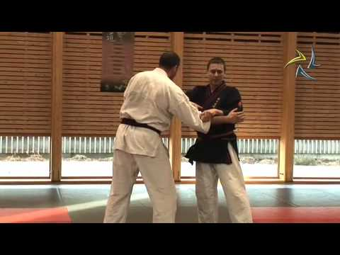 Stage Nihon Tai Jitsu