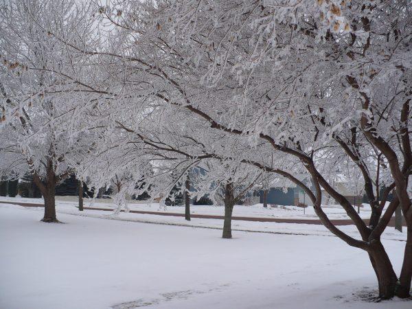 entraînement par temps froid en hiver