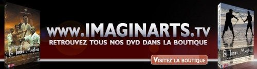 La boutique dvd video arts martiaux