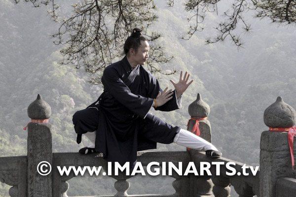 master Yuan Limin Wudang Shan
