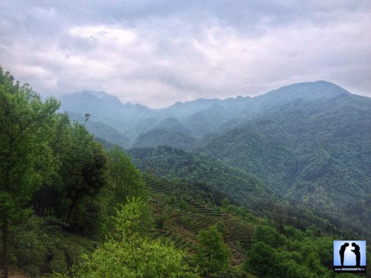 La montagne sacrée : Wudang Shan