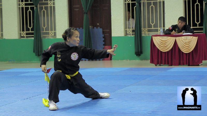 tournoi international Ho Chi Minh Võ Cổ truyền Việt Nam 2014 quyen chaîne