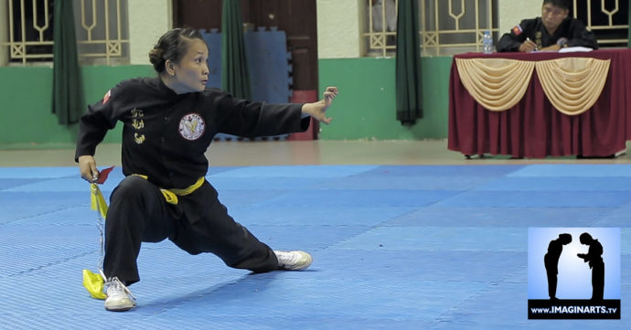 tournoi Võ Cổ Truyền Ho Chi Minh 2014