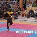 Vo Co Truyen vietnam 2014 - compétition et festival binh dinh
