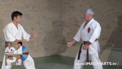 Jean-François Tisseyre - Karaté Shotokan FFkarate