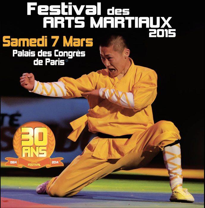 festival arts martiaux bercy