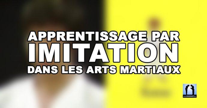 Apprentissage par imitation dans les arts martiaux
