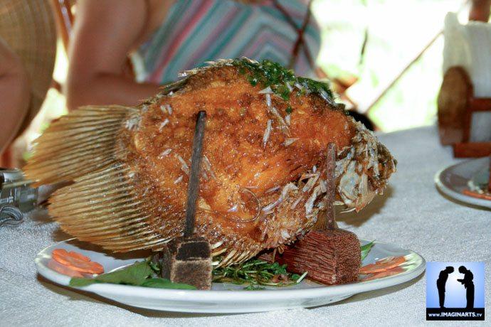 poisson éléphant vietnam