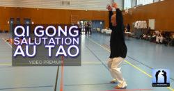 vidéo Qi Gong avec Thierry Alibert salutation au tao
