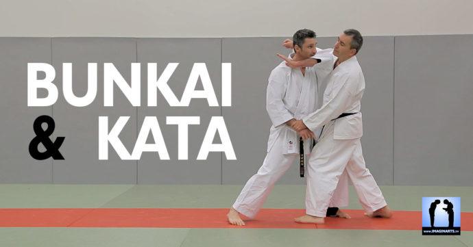 bunkai kata karate avec lionel froidure