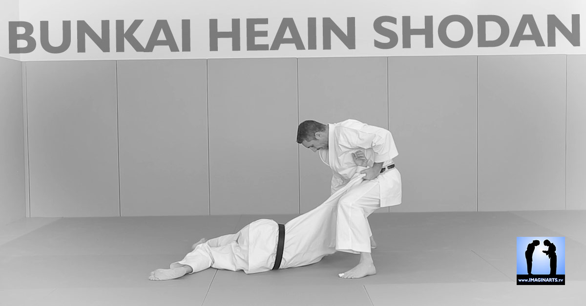bunkai heian Shodan karate Lionel Froidure