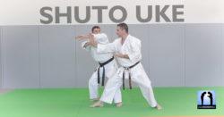 Shuto Uke Karate avec Lionel Froidure