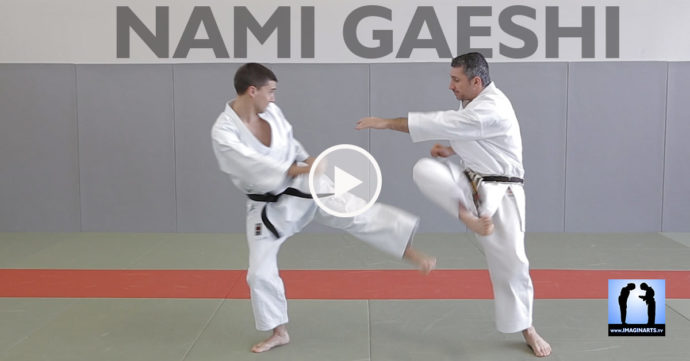 ami gaeshi karate avec Lionel Froidure