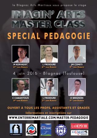 masterclass karaté pédagogie arts martiaux blagnac 2016