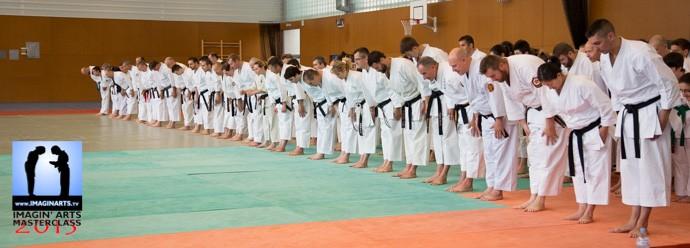 masterclass karate gi
