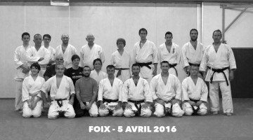 photo stage karate foix avril 2016 lionel froidure