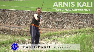 arnis kali paro-paro avec master Dani Faynot