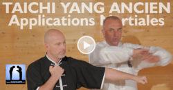 taichi applications martiales avec Thierry Alibert