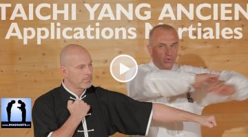 taichi applications martiales avec Thierry Alibert