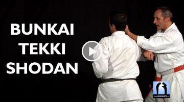 karate bunkai tekki shodan avec Bernard Bilicki