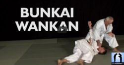 karate bunkai wankan jean-pierre lavorato sensei