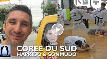 Corée, Hapkido et Sonmudo [vidéo]