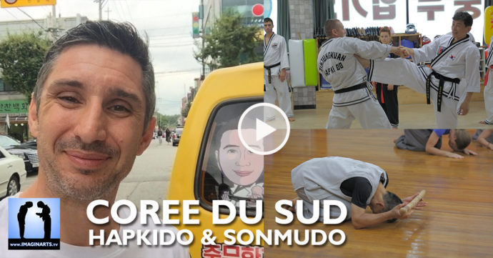 Vlog - Lionel Froidure en tournage en Corée Hapkido et Sonmudo