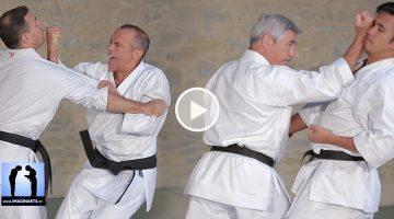 Bunkai Heian Yodan : la première partie[vidéo]