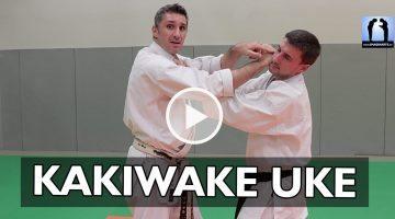 kakiwake uke karate bunkai