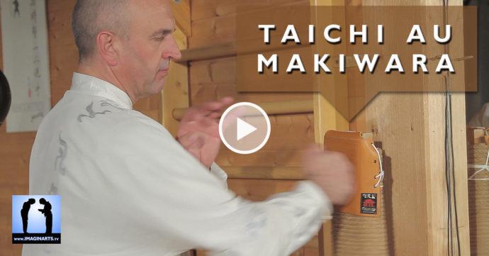 taichi fajin au makiwara avec Thierry Alibert