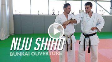 Bunkai Nijushiho (ouverture) – KARATE [vidéo]