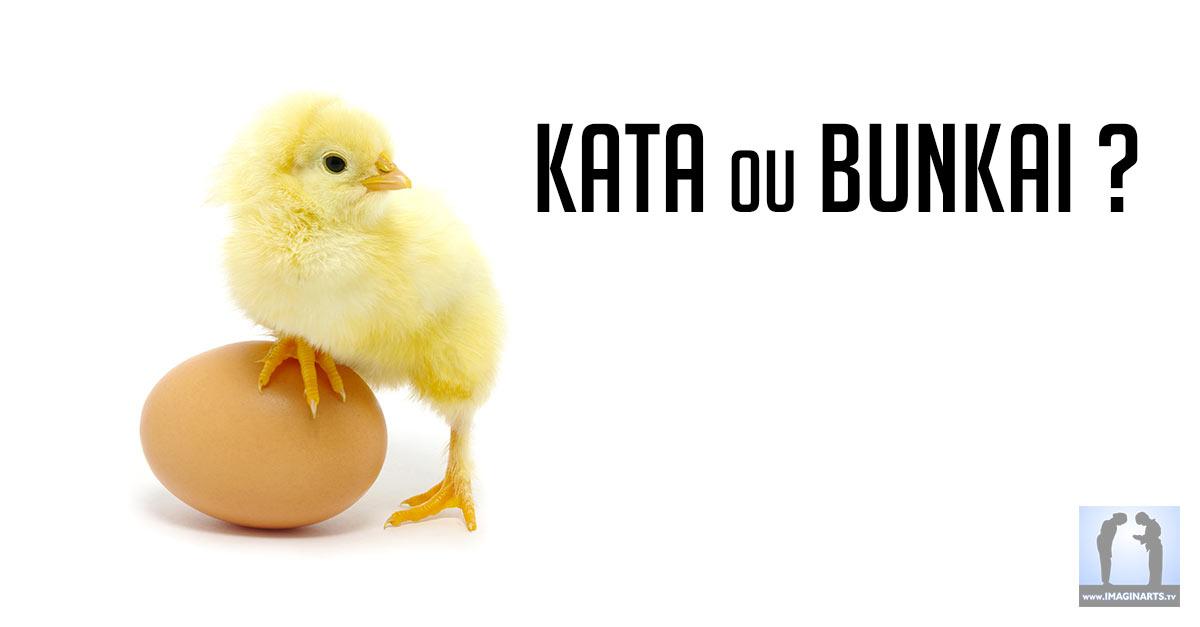 Kata ou Bunkai  ? La poule ou l'oeuf ?