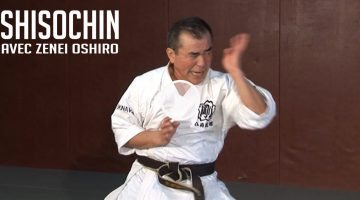 shisochin kata goju ryu karate okinawa