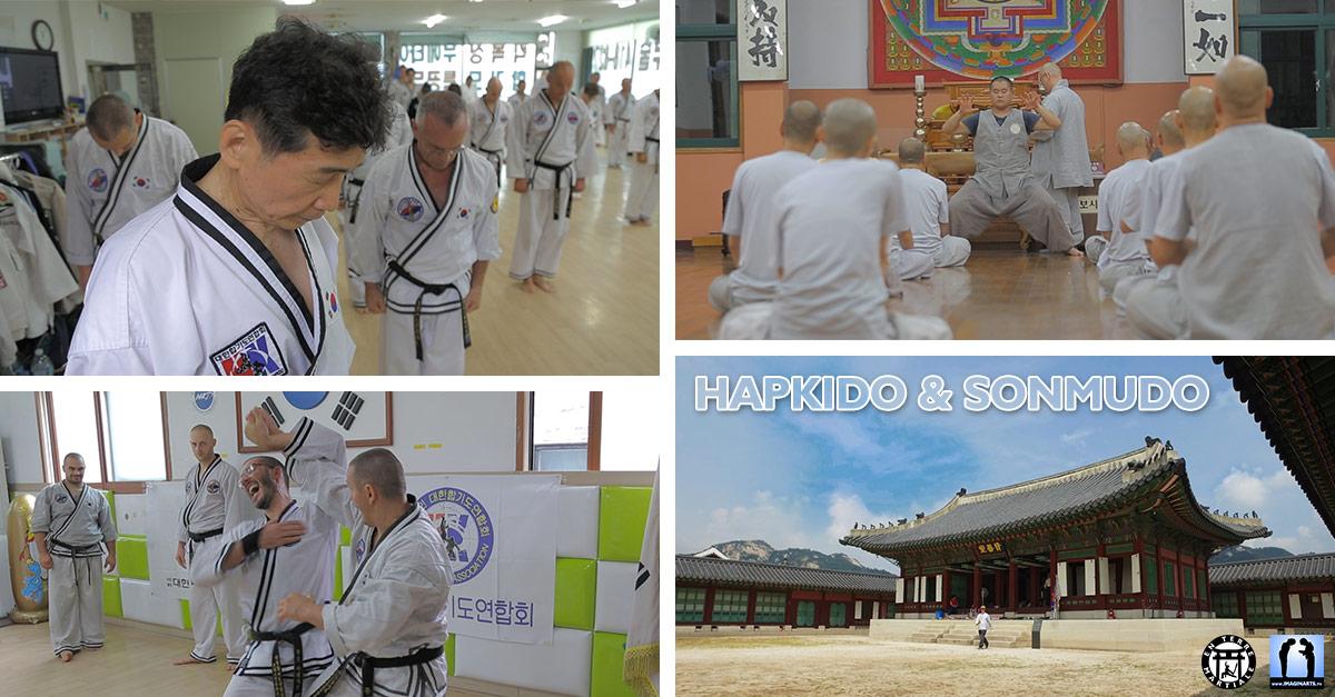 Hapkido & Sonmudo – En Terre Martiale 10