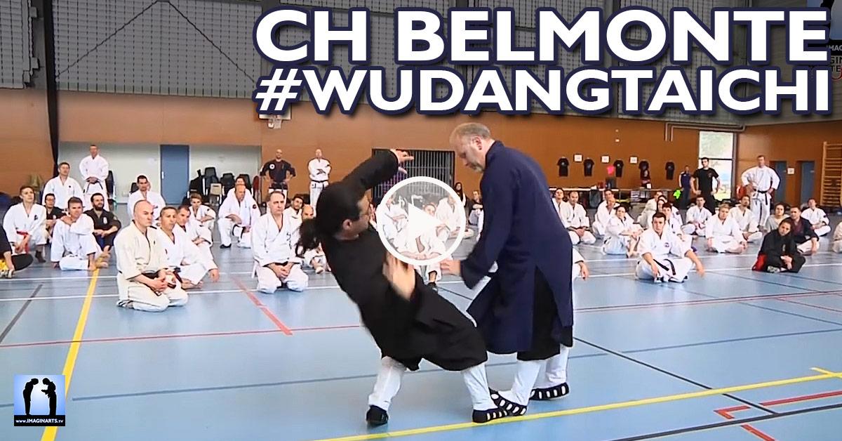 Wudang Taiji avec Charles-Henri Belmonte [vidéo]
