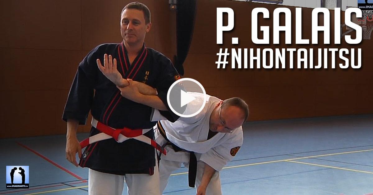 Nihon Tai Jitsu avec Philippe Galais [vidéo]