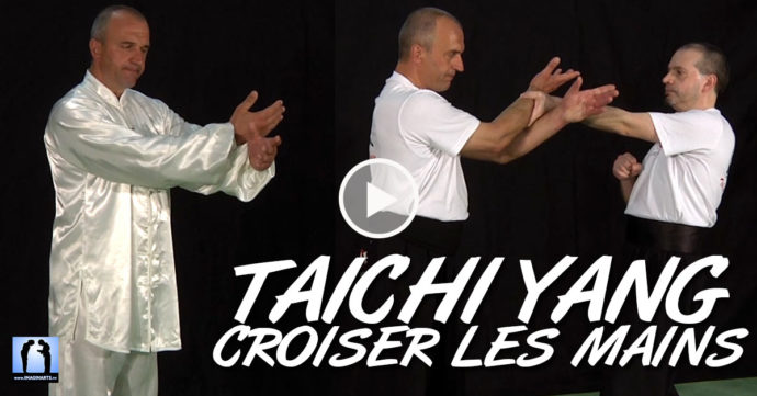 taichi chuan Yang - appuyer et croiser les mains avec Thierry Alibert