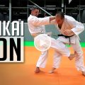 karate bunkai jion lionel froidure