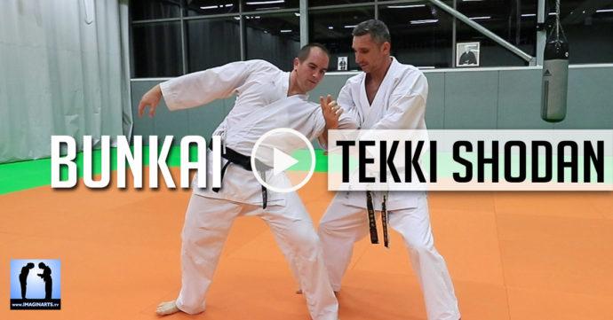 Bunkai tekki shodan karate avec Lionel Froidure