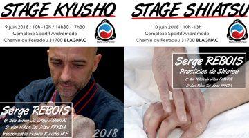Stage Kyusho & Shiatsu – Juin 2018