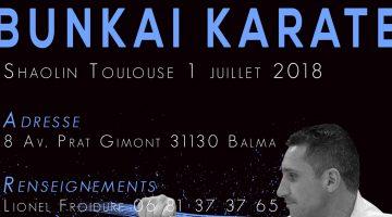 Lionel Froidure à Balma Toulouse (31) – Karaté