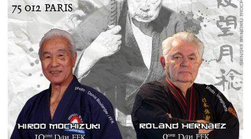 Stage Nihon Tai Jitsu & Yoseikan Budo