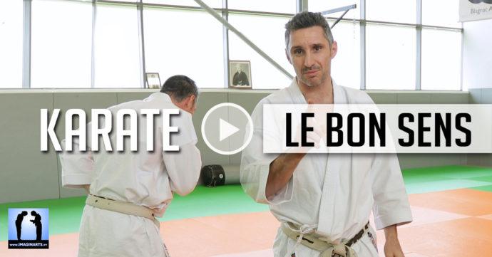Bunkai dans le bon sens - karate avec Lionel Froidure