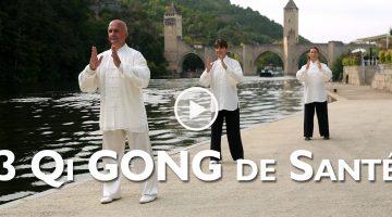 DVD video Qi Gong de Santé avec Thierry ALibert