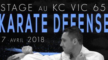 Lionel Froidure à Vic-en-Bigorre (65) – Karaté
