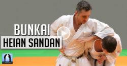 bunkai heian sandan karate avec Lionel Froidure