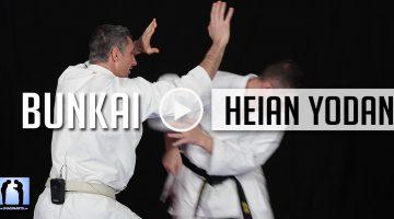 Bunkai Heian Yodan – Karate