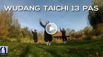 Forme des 13 pas de Wudang Taichi avec Charles-Henri Belmonte