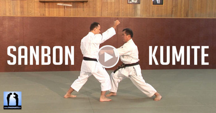 karate sanbon kumite vidéo
