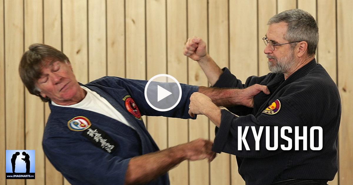 Kyusho – Tuite – Karate Bunkai [vidéo]